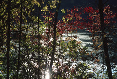 Eagle Creek Park, Indianapolis, Indiana (Roger Gerbig) Tags: fullframe 135film 35mm transparency slidefilm pkl kodachrome200 ef28105mmf3545 canoneos3 rogergerbig autumn fallcolors indiana indianapolis eaglecreekpark