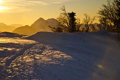 Winter evening on Gaisberg (echumachenco) Tags: winter snow evening sunset sky tracks ice tree light haze mountain mountainside alps outdoor landscape hochstaufen zwiesel chiemgaueralpen gaisberg salzburg austria österreich nikond3100