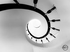 Prendre de la hauteur (davcsl) Tags: escalier colimaçon nîmes conservatoire spirale art architecture blackwhite bw biancoenero blackandwhitephotosonly davcsl europe france gard languedocroussillon monochrome monotones noiretblanc noiretblancblackwhite nb nimes occitanie southoffrance
