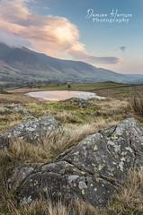 Tewet Tarn - Cumbria (99damo) Tags: cloud cumbria colour d810 fells grass keswick sky lakedistrict morning nikon rocks tewet tree blencathra water tarn winter