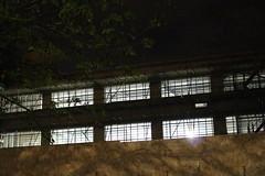 Night Shoot, 83 (doojohn701) Tags: windows trees branches building lights fence dusk dark night reflection shadow ceiling sidcup uk