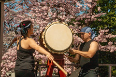 CherryBlossomDC2019-667.jpg (carlton.colter) Tags: kizuna cherryblossomdc taiko taikotakeover sakurataikofest washington dc usa