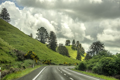 181201_668 On the roads of New Zealand (MiFleur...Thanks for visiting!) Tags: newzealand travel