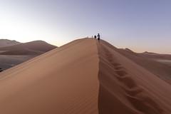 _RJS4324 (rjsnyc2) Tags: 2019 africa d850 desert dunes landscape namibia nikon outdoors photography remoteyear richardsilver richardsilverphoto safari sand sanddune travel travelphotographer animal camping nature tent trees wildlife
