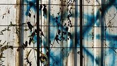 Leaves (ostplp) Tags: tag usine decay abandonné industrie industriel friche urbex exploration train route arbre graffiti feuilles