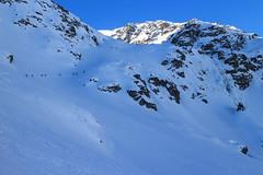 In Fila per la Strettoia (Roveclimb) Tags: mountain montagna alps alpi vallese valais svizzera suisse sempione simplon ossola scialpinismo skitouring winter inverno snow schnee neve galehorn simplonpass engiloch sirvolte sirvoltesattel sirvoltesee