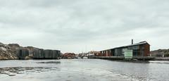Tjorn (WizardExt) Tags: grain ocean water coast sweden canoneos450d tjorn