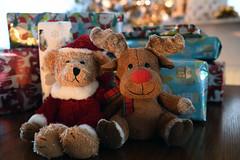 Almost time for Santa and Rudolf strut their stuff! (DESPITE STRAIGHT LINES) Tags: getty gettyimages gettyimagesesp despitestraightlinesatgettyimages paulwilliams paulwilliamsatgettyimages xmas christmas christmas2018 happychristmas happyxmas christmastime teddy santa toys xmasteddy xmastoys presents xmaspresents christmaspresents gifts happyholiday bear rudolf reindeer thankyou thanks fun silly christmastree december ilobsterit nikon24120mmf4 nikon24120mmf4gedvr nikon d850 nikond850 nikkor24120mm nikon24120mm nikongp1