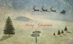 Merry Christmas (Rollingstone1) Tags: christmas card flickr friends merry happy santa sleigh trees reindeer sign art artwork grass