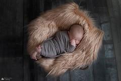 inaya (15) (Photographie Vally) Tags: bleu newborn newbornphotographie baby babylove bebe love shooting france angers feneu photographievally newbornphotography