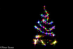 Chrismtas tree (Peter Szasz) Tags: christmas tree hungary hajdúbihar hajdu still decoration december evening outside outdoors colourful canon lights led festivity holiday merry winter longexposure light celebration happy dark night pine blue yellow red green purple star