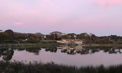 #LakeMerced #SanFrancisco (Σταύρος) Tags: iphone7plus walk walking newyear'sday orange pink january1 cardio exercise thelake boathouse lakemerced sanfrancisco sf city sfist thecity санфранциско sãofrancisco saofrancisco サンフランシスコ 샌프란시스코 聖弗朗西斯科 سانفرانسيسكو lake 湖 meer lac see λίμνη 호수 innsjø озеро sjö llyn echibi