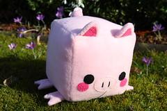 Square pig (III) (dididumm) Tags: pig piglet stuffedtoy softtoy plushtoy plushie cute kawaii handmade sewing nähen selbstgemacht handarbeit niedlich süs stofftier kuscheltier schwein schweinchen handcraft