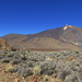 El Teide