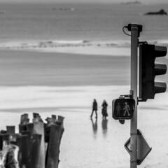Le troisième homme (Phil5135) Tags: monochrome blackwhite noiretblanc sea mer maréebasse bois briselame saintmalo sillon personnes plage beach