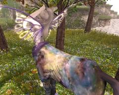 I, I, I, I'm a Butterfly ♥ (schmetterlingchen.resident) Tags: jinx lunistice secondlife virtuallife fantasy centaur