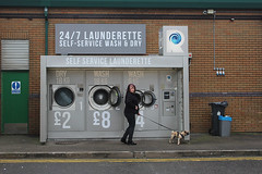 IMG_0065 1000px (Paul Russell99) Tags: launderette dog 247 outdoor