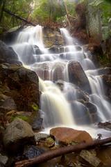 Wildcat Fall in the Rain (optimalfocusphotography) Tags: northerncalifornia california usa landscape waterfall yosemite nature water mist yosemitenp fog yosemitenationalpark longexposure nationalpark winter