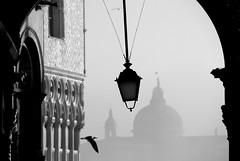 veduta* (view*) (pjarc) Tags: italy italia veneto venetian venice venezia venedig veduta view winter 2018 città city sanmarco square architecture architettura foto photo bw nikon dicembre december
