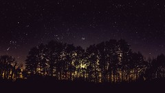 Small Forest Nightsky (ReppiX) Tags: astrofotografie astrofotografia astrophotographie astrophotography night nightphotography nightsky nightshot nacht nachtfotografie sterne sternenhimmel himmel astronomie astronomy nature natur beautiful