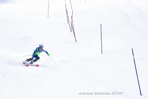 Alpine Races I & II Feb 2019_13