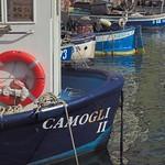 Camogli II thumbnail