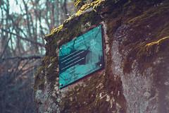KRIS8068 (Chris.Heart) Tags: erdő buda budapest túra természet forest nature hiking