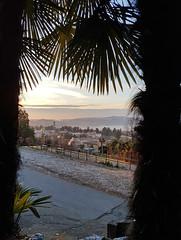 Varèse depuis le jardin du Palace Grand Hotel (Livith Muse) Tags: arbre brume ville cadre varese lombardia italie ita samsung smartphone galaxy s7 frame fog italy italia