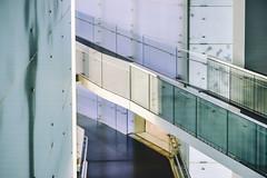 Profiles (*Capture the Moment*) Tags: 2019 abstract abstrakt bmw bmwmuseum bokeh focalpoint fokus fotowalk minimalism minimalismus munich münchen sonya7m2 sonya7mii sonya7mark2 sonya7ii sonyilce7m2 zeissbatis1885 bokehlicious