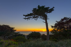 San Francisco Sunset © (Rodolfo Quinio) Tags: sanfranciscosunset nikond800 nikonafs1424mmf28ged sutroheights sanfranciscoca sanfranciscobay pacificocean sunset water ocean bluehour 162