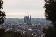 La Sagrada Familia in Barcelona (AM Photography Alfonso M) Tags: spain barcelona toledo vacation amphotography amphoptography alfonsomartinez amazing beautiful la sagrada familia