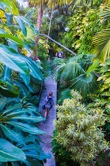 into the jungle (jenny_guo) Tags: florida keywest travel people green trees plants walk road narrowroad xpro2 x fujinon 18mm f2 girl garden outdoor fromabove