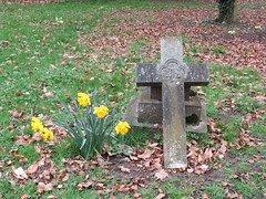 Friday, 22nd, Daffodils in the churchyard IMG_4389 (tomylees) Tags: stpeteradvincula church coggeshall essex march 2019 22nd friday project 365 graves