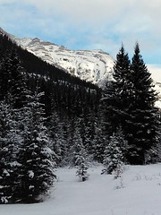 Lunch spot on the trails! (altamons) Tags: xcountry winterland winter snow skiing ski rockymountains rocky rockies mountainview mountains mountain landscape cold canadianrockies canadian canada altamons alberta banffnationalpark banff nationalpark