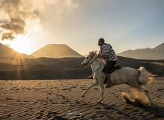 Galloping over volcanic ash inside a crater, with Bromo expelling sulphuric fumes as a backdrop. This place is among the top 10 most unreal places on Earth! (C) Joel Santos #liveforthestory #eosr #joelsantosphoto #bromo #indonesia #indonesia_photography # (Joel Santos - Photography) Tags: galloping over volcanic ash inside crater with bromo expelling sulphuric fumes backdrop this place is among top 10 most unreal places earth c joel santos liveforthestory eosr joelsantosphoto indonesia indonesiaphotography passportready travelbloggers traveltheworld mytravelgram travelblog instatraveling agameoftones ourplanetdaily placeswow
