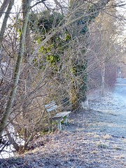 Weg mit Bank im Winter   Path with bench in winter (Bernd-BeNeFoto@gmail.com) Tags: path bench weg bank winter