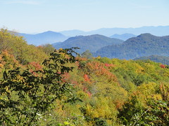 DSC07642 (TerrMys) Tags: northcarolina nc southern appalachians fall autumn october