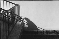 PrR964536 (fio analog) Tags: wien vienna grain stairs blackandwhite film shadow