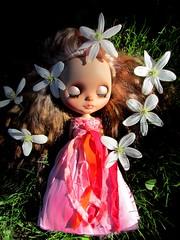 Flowers (SJB Dolls) Tags: blythe custom flower doll