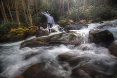 Raging Waters (Waterfall Guy) Tags: big creek mouse falls waterfall great smoky mountains national park north carolina