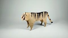 lion (guangxu233) Tags: art fold paper paperart paperfolding handmade animals lion hideokomatsu origami origamiart 折纸 摺紙 折り紙 折り紙作品