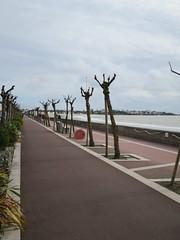 Promenade boulevard Garnier, Royan (17) (Yvette G.) Tags: promenade pistecyclable 1mois1thème ladiagonale mars2019 royan 17 charentemaritime poitoucharentes nouvelleaquitaine