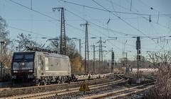 03_2019_02_15_Recklinghausen_Ost_ES_64_F4_-_454_5170_028_DISPO_MRCE_mit_Containerzug ➡️ Oberhausen (ruhrpott.sprinter) Tags: ruhrpott sprinter deutschland germany allmangne nrw ruhrgebiet gelsenkirchen lokomotive locomotives eisenbahn railroad rail zug train reisezug passenger güter cargo freight fret recklinghausen recklinghausenost db dispo erd mt rbh 0275 803 6185 6189 7386 9121 9125 es64f4 becker bahnbau beckerbahnbau eiffage mrcedispolok stopfmaschine schotterplaniermaschine outdoor logo natur