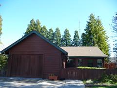 brown house 3 11 19 (safoocat) Tags: tz5 121