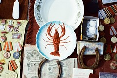 Lobster (songhula) Tags: canon ae1 lomography 400 color photography antique film analogue