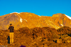 _FOU9563.jpg (Murray Foubister) Tags: 2018 gadventures spring mountainsm flora travel treking africa tanazania