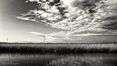 Landcape In Layers (Alfred Grupstra) Tags: nature landscape windturbine sky turbine environment cloudsky outdoors ruralscene water generator wind sunset nopeople fuelandpowergeneration cloudscape field farm summer grass 766
