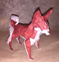 Husky 2019 (DirgeOfDreams) Tags: origami siberian husky sled dog paper folding craft paperfolding papercraft