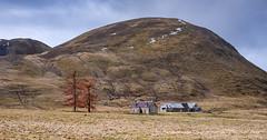 Findhorn Valley (www.facebook.com/PaulSmithWildlife) Tags: nature landscape scotland highlands cairngorms
