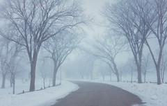 Frosty foggy morning (BreezyWinter) Tags: frosty foggy morning march cold road snow frost